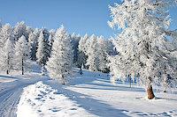 Winterurlaub im Urlaubsland Freyung-Grafenau